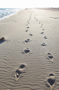Photograph of Footprints in the sand